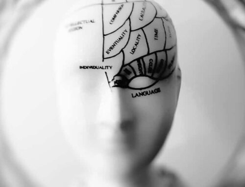 CBD and Neurogenesis: New Neurons In the Brain Can Help to Relieve Stress